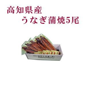 高知県産 うなぎ蒲焼 5尾/四万十/高知/冷凍/国産/無添加/ウナギ/鰻