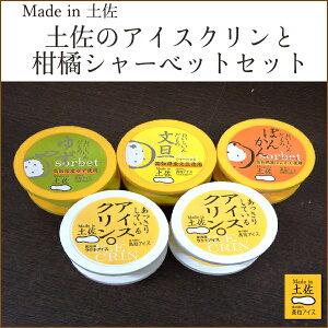 高知アイス Made in 土佐のアイスクリンと柑橘シャーベットセット