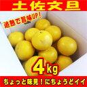訳あり土佐文旦4kg 追熟で旨味UP! ご家庭用にサイズM〜2L(4kg)高知県産 いよいよシーズン出荷開始!キズ変形果が多くサイズもバラバラのため特別価格!