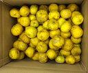 訳あり柚子10Kg 高知県の柚子。冬至 柚子玉 柚子の実 柚子風呂 栽培中農薬不使用。表面に傷やでこぼこがあり、色…