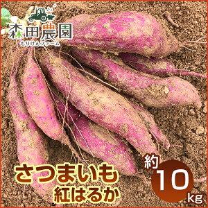 さつま芋「紅はるか」約10kg/S〜Lサイズ/森田農園/高知/日曜市/べにはるか/ベニハルカ/さつまいも/サツマイモ/薩摩