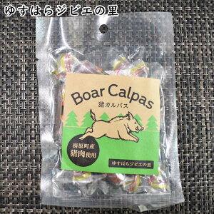 猪 カルパス 1袋(40g) ゆすはらジビエの里 高知県産 イノシシ ジビエカー GIBIER いのしし お手軽 1品