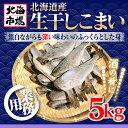 北海道産 生干し こまい 5kg【業務用】【氷魚】