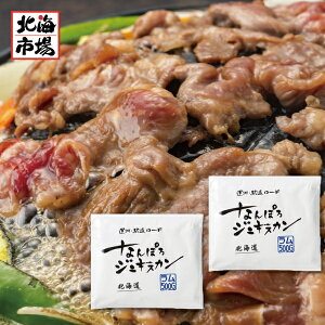 【北海道ジンギスカン】なんぽろジンギスカン ラム 500g×2袋セット【北海道名物】焼肉 BBQ キャンプ食材 地元の味 ご当地食品