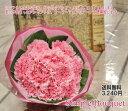 【送料無料】【母の日ギフト】母の日シンプルブーケ。大輪カーネ—ション10本の花束