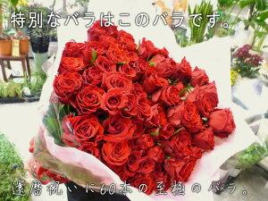 至極の赤いバラ(薔薇)60本の花束。特別な赤バラを揃えた、至極の大きい花束。上質なバラを贅沢に束ねています。特別なプレゼントや、プロポーズなどにお贈りください☆【お祝い】【