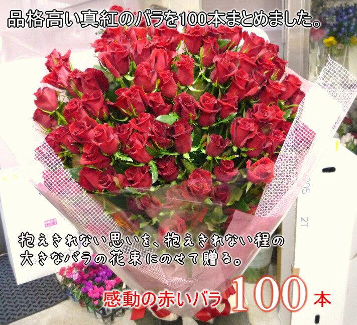 赤いバラ100本の花束☆ハイグレードの深紅バラ!!国産の薔薇の中でも極上の産地を特選し、選び抜いた赤バラをセンスよく束ねました。