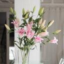 上質なピンクユリ5本を豪華に、シンプルにまとめた花束!しっかりしたラッピングなので、あらゆる場面に映えます♪【フラワーギフト】