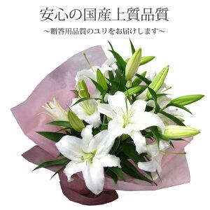 上質な白いユリ5本を豪華に、シンプルにまとめた花束!しっかりしたラッピングなので、あらゆる場面に映えます♪【フラワーギフト】