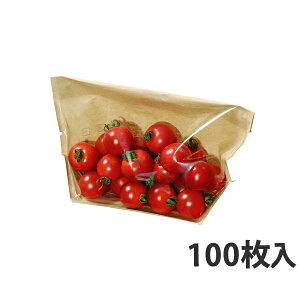 【スタンド袋】 タートルパック BP-27-15 270×40×150mm(100枚入)