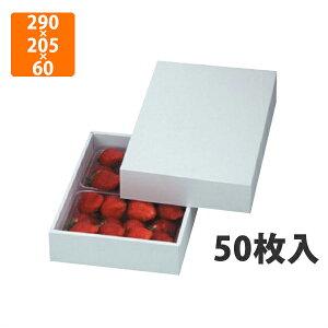 【化粧箱】LTO-28パール DX 290×205×60mm(50枚入)【代引不可】