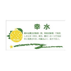 【シール】青果シール 幸水 80×40mm LZ393 (300枚入り)