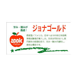 【シール】青果シール ジョナゴールド 80×40mm LZ402 (300枚入り)