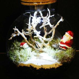 【現物撮影】LEDライト付 ボトルテラリウム 高さ17cm 苔テラリウム 完成品 現物 苔盆景 テラリウム サンタクロース クリスマス プレゼント