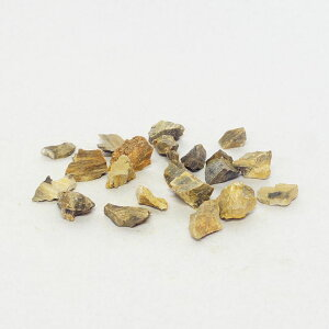 1-2cm 20個 木化石 飾り石 超ミニ ボトルテラリウム テラリウム形状お任せ レイアウト石 アクアリウム アクアテラリウム
