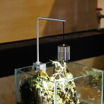 LED ペンダントランプ スポットライト L アクアリウムボトルテラリウム 苔テラリウム 苔盆景にも