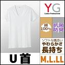 YG ワイジー COTTON 綿100% UネックTシャツ Mサイズ Lサイズ LLサイズ グンゼ GUNZE |インナーウエア インナーウェア アンダーウェア...
