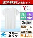 Yv1013-set_1