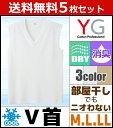 送料無料5枚セット YG ワイジー DRY&COOL ドライ COOLMAGIC クールマジック Vネックスリーブレスシャツ Mサイズ Lサイズ LL グンゼ ...