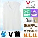 Yv1018_1