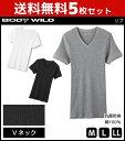 5枚セット BODYWILD ボディワイルド VネックTシャツ 半袖V首 グンゼ GUNZE ボディーワイルド BODY WILD | メンズ 綿10…