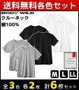 3色1組ずつ 3組セット 計6枚 BODYWILD ボディワイルド クルーネックTシャツ 半袖丸首 2枚組 グンゼ GUNZE ボディーワ…