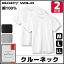 BODYWILD ボディワイルド クルーネックTシャツ 半袖丸首 2枚組 グンゼ GUNZE ボディーワイルド BODY WILD   肌着 下着…