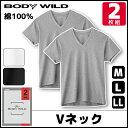BODYWILD ボディワイルド VネックTシャツ 半袖V首 2枚組 グンゼ GUNZE ボディーワイルド BODY WILD | メンズ 綿100% …
