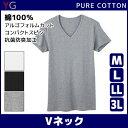 YG ワイジー COTTON 綿100% VネックTシャツ Mサイズ Lサイズ LLサイズ 3Lサイズ グンゼ GUNZE| メンズ インナー イン…