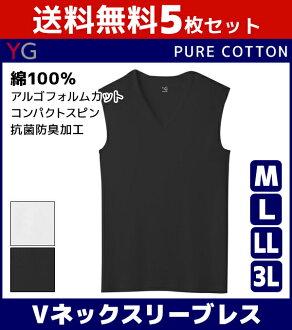 5 表設置 100%棉棉為 YG 資訊學 V 領口襯衫 M 大小 L 大小 LL 大小 3 L 大小郡郡是商店郡郡 | 郡郡股份是由郡郡股份