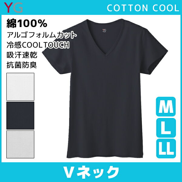 YG ワイジー COTTON COOL VネックTシャツ Mサイズ Lサイズ LLサイズ グンゼ GUNZE|メンズ インナー 紳士 涼感インナー クールインナー ティーシャツ メンズインナー 大きいサイズ 夏用 涼しい クール ブイネック 肌着 男性下着 父の日 ギフト ひんやり 夏