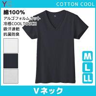 YG ワイジー COTTON COOL VネックTシャツ Mサイズ Lサイズ LLサイズ グンゼ GUNZE|メンズ インナー 紳士 涼感インナー  クールインナー ティーシャツ メンズインナー ...