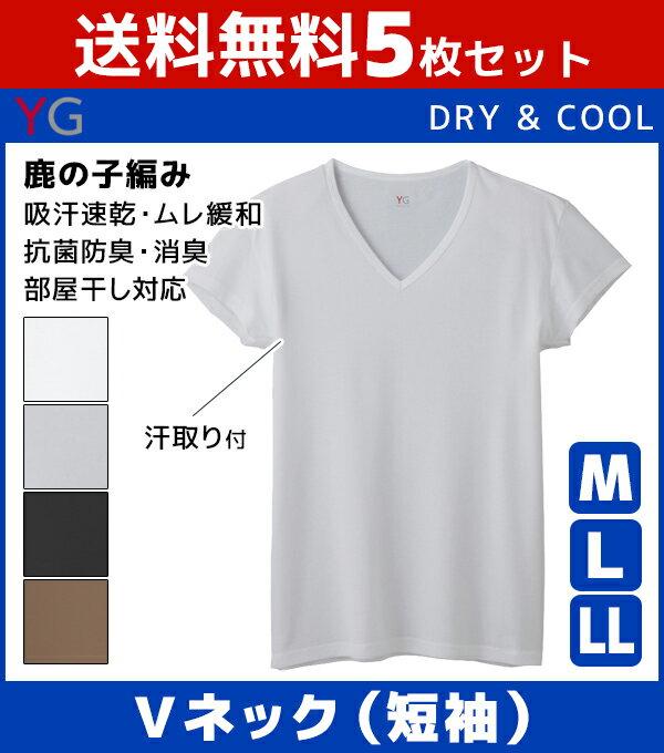 送料無料5枚セット YG ワイジー DRY&COOL ドライ COOLMAGIC クールマジック 汗取り付きVネックTシャツ 短袖 グンゼ GUNZE 涼感 | 涼しい 夏用 メンズ インナー クール 大きいサイズ ひんやり クールビズ tシャツ 夏 下着 インナーシャツ 肌着 シャツ vネック