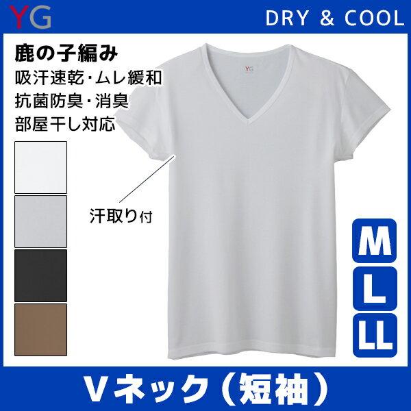 YG ワイジー DRY&COOL ドライ COOLMAGIC クールマジック 汗取り付きVネックTシャツ 短袖 Mサイズ Lサイズ グンゼ GUNZE| クール ひんやり メンズ 涼しい 涼感 インナー 大きいサイズ 吸汗速乾 男性下着 クールインナー 紳士 ティーシャツ 冷感インナー 下着