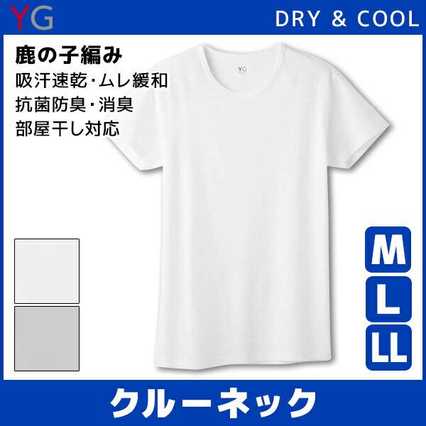 YG ワイジー DRY&COOL ドライ COOLMAGIC クールマジック クルーネックTシャツ Mサイズ Lサイズ LL グンゼ GUNZE| メンズ 涼しい 大きいサイズ 肌着 吸汗速乾 男性下着 メンズインナー クールインナー 紳士 ティーシャツ 涼感インナー インナーシャツ 下着