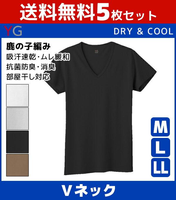 送料無料5枚セット YG ワイジー DRY&COOL ドライ COOLMAGIC クールマジック VネックTシャツ グンゼ GUNZE 涼感 | 夏 涼しい 夏用 メンズ インナー クール 大きいサイズ ひんやり クールビズ tシャツ 下着 インナーシャツ メンズ肌着 シャツ 冷感シャツ vネック