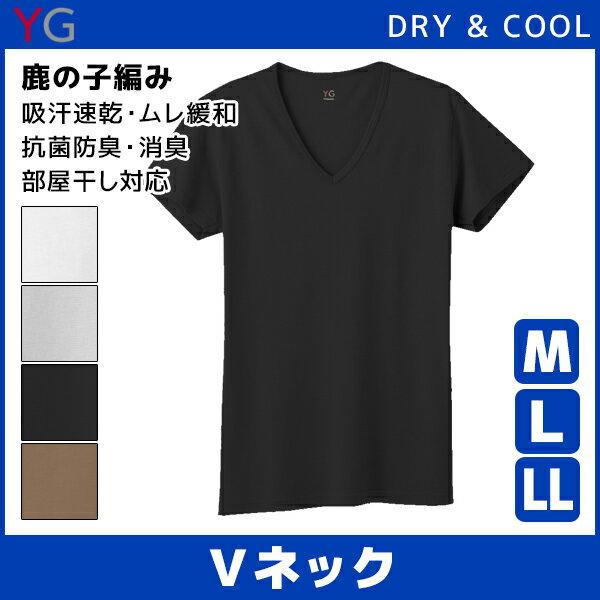 YG ワイジー DRY&COOL ドライ COOLMAGIC クールマジック VネックTシャツ Mサイズ Lサイズ LL グンゼ GUNZE|メンズ ティシャツ 涼感インナー クールインナー ティーシャツ メンズインナー 大きいサイズ 夏用 涼しい 吸汗速乾 紳士 肌着 男性下着