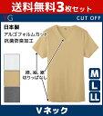 送料無料3枚セット YG ワイジー CUT OFF カットオフ VネックTシャツ 半袖V首 グンゼ GUNZE 日本製 | メンズ インナー…