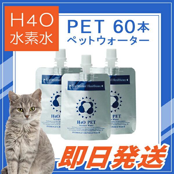 【キャンペーン!評価1位!】 ≪その場で使える500円OFFクーポン≫も取得可能! H4O PET 60本セット 水素水 最短便 ペット用ウォーター