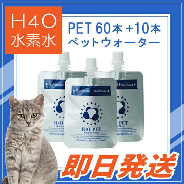 満足度1位! ≪その場で使える500円OFFクーポン≫も取得可能! ペット用ウォーター H4O PET 60本+10本増量セット 水素水 最短便
