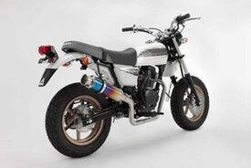 BEAMS (ビームス) バイク用 マフラー APE100D EBJ - HC13 フルエキ フルエキゾースト SS 300 チタン/アップタイプ B140-09-003