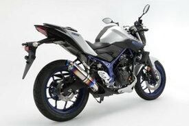 BEAMS (ビームス) バイク用 マフラー MT-25 JBK-RG10J R-EVO スリップオン ヒートチタンサイレンサー 政府認証 22年騒音規制対応 G247-53-P1J