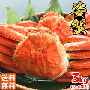 【送料無料】簡単調理 ボイル済ずわい蟹 5〜6尾入(約3Kg前後) かに カニ ずわい ズワイ かに 通販 かに かに鍋 かにみそ 蟹