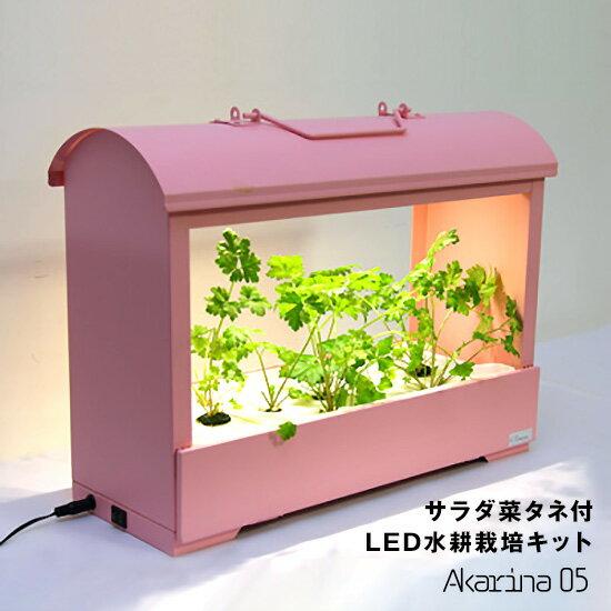 灯菜Akarina05ピンク LED水耕栽培キット サラダ菜タネ・スポンジ・液体肥料付き