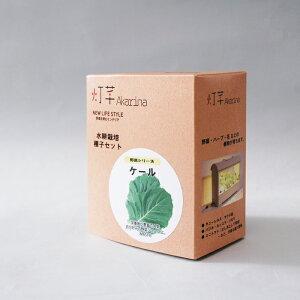 ケール水耕栽培用種子セット タネ スポンジ 液体肥料 MAS11 野菜の種 モトム 灯菜