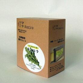 【種子】水耕栽培用ルッコラ種子セット mas08タネ約20粒 液体肥料50ml 水耕栽培用スポンジ30個 野菜 種 タネ イタリアの野菜 ハーブ種
