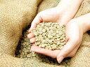 【生豆販売】新豆★LCFリントンマンデリン インドネシア/リントン・ニフタ地区 200g|スペシャルティコーヒー|コーヒー|珈琲|コーヒー豆|珈琲豆|LCF Mandhering|INDONESIA|