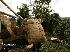 新豆★コロンビア ナリーニョ-ブエサコ セントロ フレンチロースト 200g|COLOMBIA|colombia|深煎り|ストロング|【組み合わせ自由!コーヒー豆800g以上ご注文で送料無料】