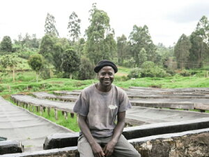 新豆★ケニア キリニャガ キウニュファクトリーAA フレンチロースト 200g|KENYA|kenya|SL34|SL28|深煎り|ストロング|【組み合わせ自由!コーヒー豆800g以上ご注文で送料無料】