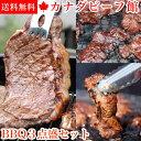 3〜4人前 BBQ3点盛セット1.1kg バーベキューセット サーロイン ステーキ バーベキュー 肉 アウトドア 食材 BBQ パー…